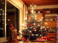Feuergefahr durch den Weihnachtsbaum