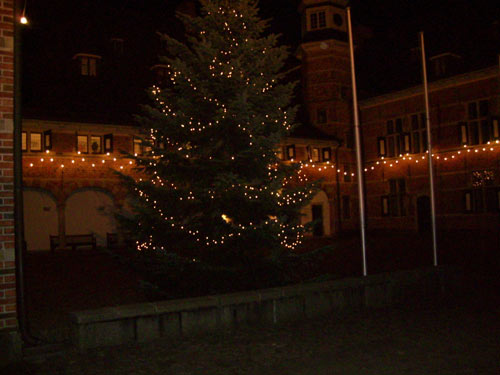 Weihnachtsbaum - Schloss Reinbek